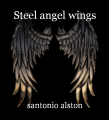 Steel angel wings