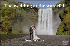 The wedding at the waterfall