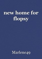 new home for flopsy