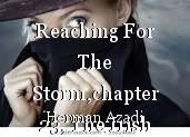 Reaching For The Storm,chapter 23, The Irish Spy