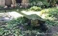 Loch Ness Turtle
