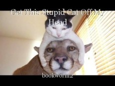 Get This Stupid Cat Off My Head