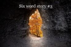 Six word story #3
