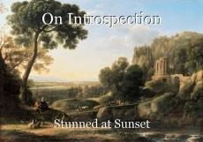 On Introspection
