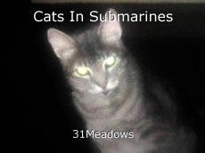 Cats In Submarines