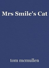 Mrs Smile's Cat