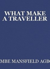 WHAT MAKE A TRAVELLER