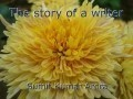 The story of a writer