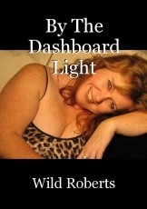 By The Dashboard Light