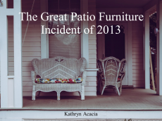 The Great Patio Furniture Incident of 2013