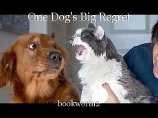 One Dog's Big Regret