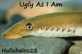Ugly As I Am
