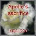 Apollo's sacrifice