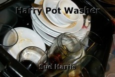 Harry Pot Washer