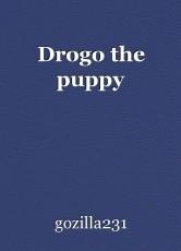 Drogo the puppy