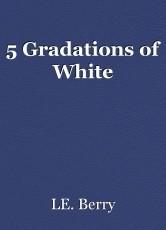 5 Gradations of White