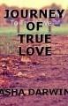 JOURNEY OF TRUE LOVE