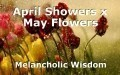 April Showers x May Flowers