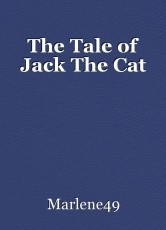 The Tale of Jack The Cat