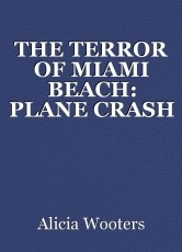 THE TERROR OF MIAMI BEACH: PLANE CRASH
