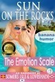 Sun on the Rocks - The Emotion Scale