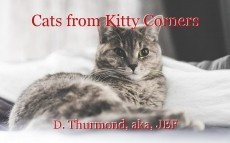 Cats from Kitty Corners