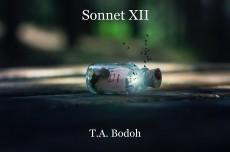 Sonnet XII