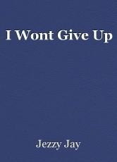 I Wont Give Up