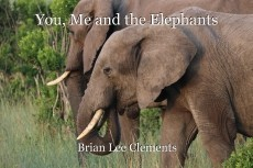 You, Me and the Elephants