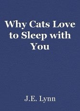Why Cats Love to Sleep with You