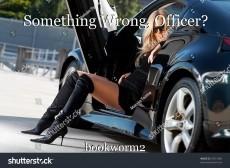 Something Wrong, Officer?