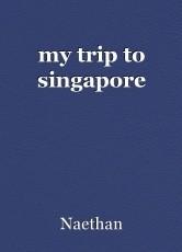 my trip to singapore