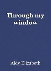 Through my window