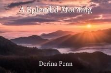 A Splendid Morning