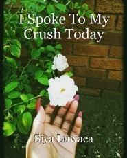 I Spoke To My Crush Today