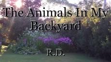 The Animals In My Backyard
