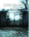 Little Country Lost
