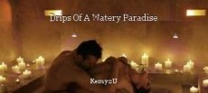 Drips Of A Watery Paradise