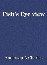 Fish's Eye view