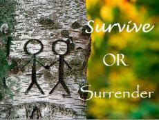 Survive or Surrender