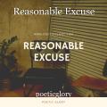 Reasonable Excuse
