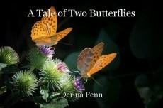 A Tale of Two Butterflies