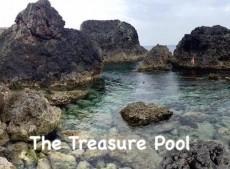 The Treasure Pool