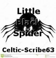 Little Black Spider