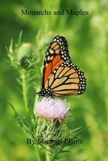 Monarchs and Maples