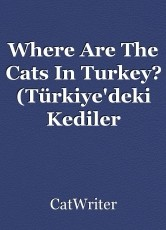 Where Are The Cats In Turkey? (Türkiye'deki Kediler Nerede?)