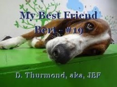 My Best Friend Bert - #19
