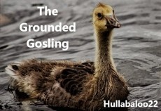 The Grounded Gosling