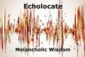 Echolocate