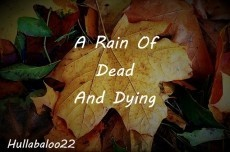 A Rain Of Dead And Dying